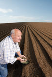 Farmer cupping soil in ploughed field Royalty Free Stock Photos