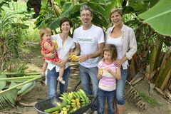 Farmer and customer family in banana plantation Royalty Free Stock Photo