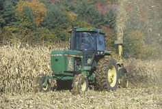 Farmer cutting corn with tractor Royalty Free Stock Photos