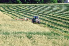 Farmer cutting field. Farmer on tractor cutting hay in farm field in Town of Sheboygan, Wisconsin in the united states of america part of the agricultural area royalty free stock image