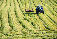 Farmer Cutting Hay With Tractor. A farmer harvests his hay field with a tractor and grass cutting attachment at this commercial agricultural operation Royalty Free Stock Photography
