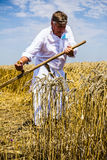 Farmer cutting wheat Stock Image
