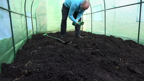 Farmer dig ground in hothouse and check soil fertility. 4K. Male farmer dig ground in greenhouse and check examine fertility of compost fertilized soil. Man show stock video footage
