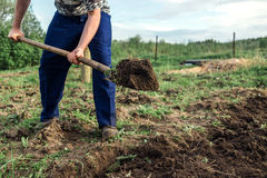 Farmer digging the earth to build a deep bed of in the kitchen garden Royalty Free Stock Image
