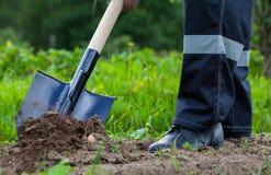 Farmer digging a garden Royalty Free Stock Image