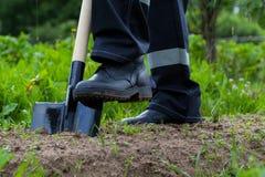 Farmer digging a garden Stock Photos