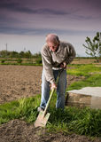 Farmer digging in the garden Royalty Free Stock Photo