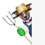 Farmer dog. Happy farmer dog with thumb up holding a pitchfork behind a placard stock photos
