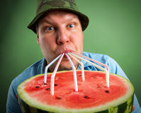 Farmer drinking watermelon juice. Bizarre farmer drinking watermelon juice through a tubules Royalty Free Stock Photos