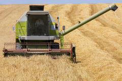 Farmer driving combine in barley field Stock Photos