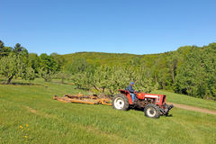 Farmer driving tractor in apple orchard, Berkshires, MA Royalty Free Stock Images