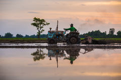 Farmer driving tractor in the fields during harvest in countryside, silhouette. stock photos