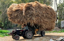 Pengzhou, China: Tractor with Dried Rice Stalks Stock Photos