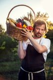 Farmer with an ecological harvest of vegetables in a basket near Royalty Free Stock Photography