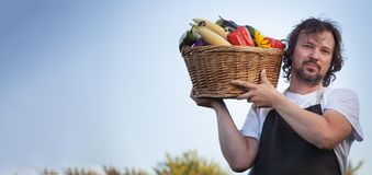 Farmer with an ecological harvest of vegetables in a basket near. The garden beds in summer Royalty Free Stock Images