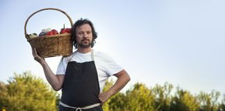 Farmer with an ecological harvest of vegetables in a basket near. The garden beds in summer Royalty Free Stock Image