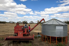 A farmer empties grain from his harvester into a field silo. Royalty Free Stock Images