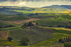 Farmer estate with vineyards  at sunrise in San Quirico d'Orcia Stock Photo