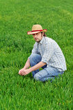 Farmer Examines and Controls Young Wheat Cultivation Field Stock Image