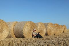 Farmer examining wheat field after harvest using tablet. Female farmer in wheat field after harvest examining bale, rolled straw, using tablet Stock Photography