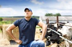Farmer at farm with dairy cows. Man farmer thinks on cow farm stock photo