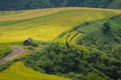 Farmer and farm Royalty Free Stock Photography