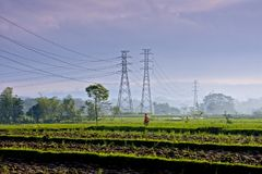 A Farmer and High Voltage Wires Royalty Free Stock Photography