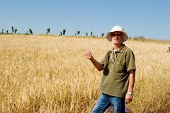 Farmer in a field Royalty Free Stock Image