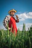 Farmer in field Royalty Free Stock Photos