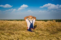 Farmer in field Stock Images