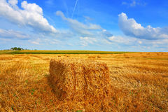 Farmer field Stock Images