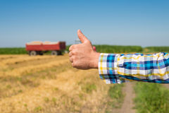 Farmer in the Field. Farmer pleased yield of wheat Royalty Free Stock Image