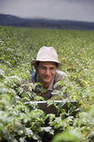 Farmer in the fields Royalty Free Stock Photo