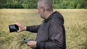 Farmer filmed with tablet PC near yellow cereal field stock video