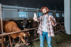 Farmer with fresh milk in stall stock image