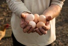 Farmer with fresh organic eggs Royalty Free Stock Image