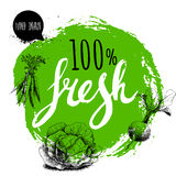 Farmer 100% fresh veggies design template. Green rough circle with hand painted letters. Engraving sketch style vegetables. Carrot Stock Photos