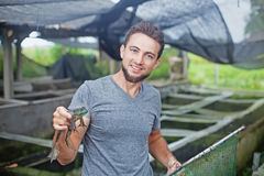 Farmer on frog farm in Bali Royalty Free Stock Images