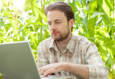 Farmer in front of corn field working on laptop computer Stock Photos