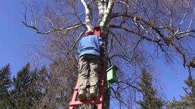 Farmer gardener hammering new bird house nesting-box on tree in spring stock video footage
