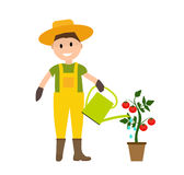 Farmer Gardener Man with Watering Can and Tomato Plant in Modern. Flat Style Vector Illustration EPS10 Stock Photos