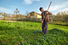 Farmer gathering grass to feed the animals Stock Photo