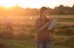 Farmer girl in field at sunset Royalty Free Stock Images