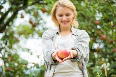 Farmer girl hold apple. Local crops concept. Healthy lifestyle. Eat fruits every day. Woman hold apple green garden royalty free stock image