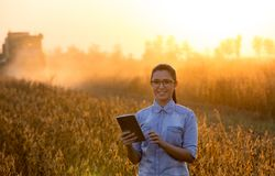 Farmer girl with tablet and combine harvester Stock Photography