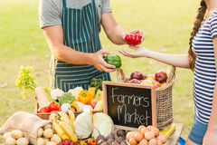 Farmer giving pepper to customer Royalty Free Stock Images