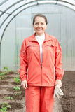 Farmer in  greenhouse Royalty Free Stock Photo