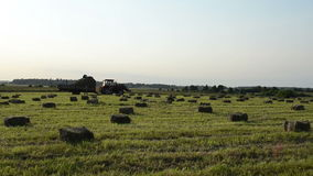 Farmer harvest hay bale Royalty Free Stock Image