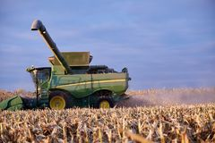 Farmer harvesting the maize crop. With a combine harvester viewed over fresh stubble in evening light on the skyline Stock Image