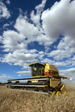 A farmer harvests a broadacre paddock of wheat. Stock Photo